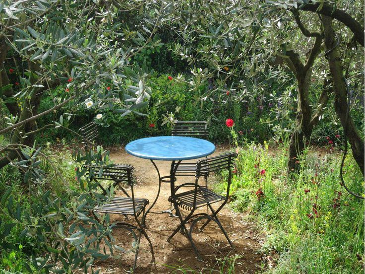 In The Garden: Get to know your favourite things
