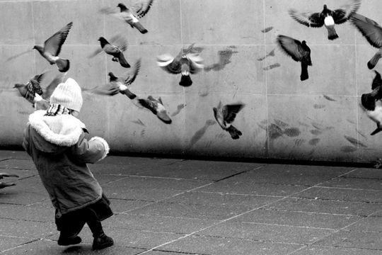 Les fameux pigeons parisiens attirent les bambins. A Châtelet, Paris. The famous Parisian pigeons attract toddlers. Chatelet, Paris.