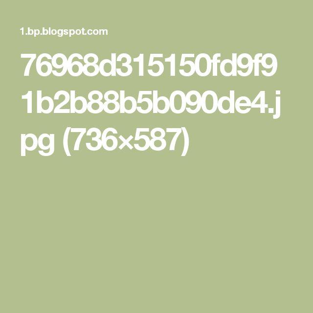 76968d315150fd9f91b2b88b5b090de4.jpg (736×587)