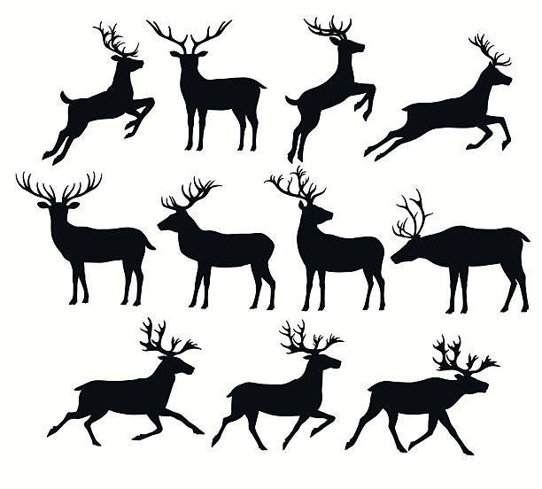 Set Of Deer Silhouettes Vector Art Illustration Minimal Drawings Deer Silhouette Deer Vector