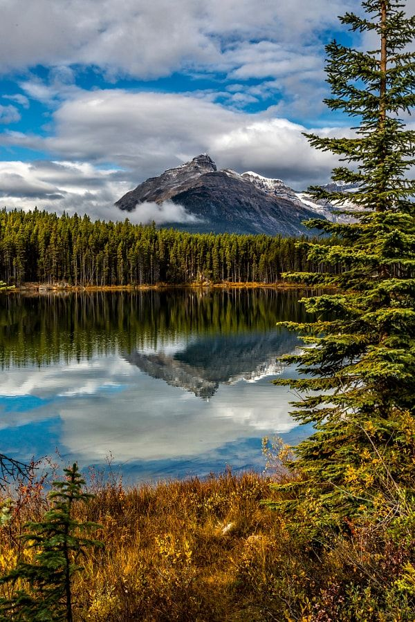 Mountains Reflecting in Herbert Lake, Banff by Perry Hoag / 500px