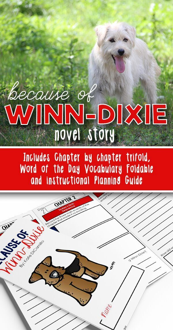 Looking for a purposeful novel study to go with your Because of Winn-Dixie unit? Sick of spending hours preparing for book clubs or handing out a list of chapter comprehension questions that build skills that don't transfer? This no prep book study has activities designed to help your students build deep reading comprehension skills without a ton of work on your end.