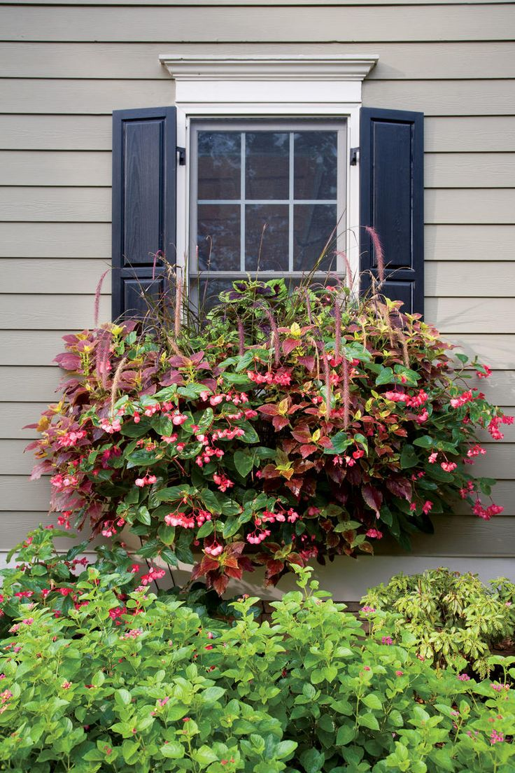 best Garden images on Pinterest For the home Container garden