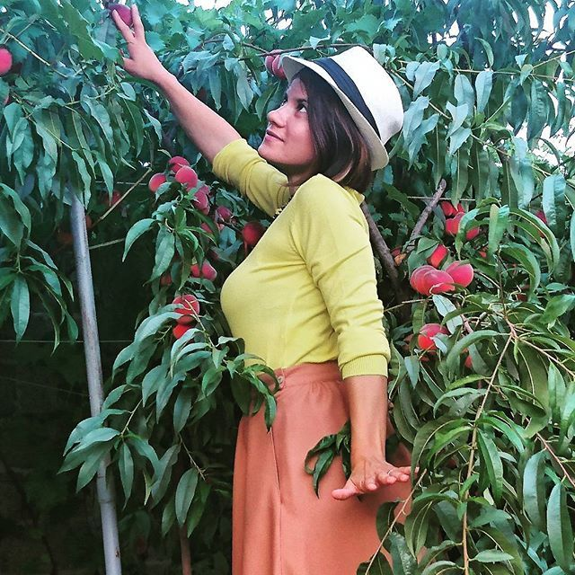 In a rainy day of late October a glimpse of summer is good for the soul. #peach #summer #october #rainyday #sustainablefashion #sustainableliving #secondhandfashion #ecofriendly #sunday #weekend #instaphoto #pictureoftheday #nachhaltig #fightfastfashion