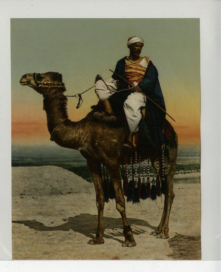 P.Z.     #Afrique_Africa #Egypte