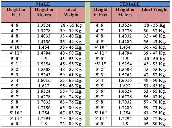 Your Height And Weight Chart Health Pinterest