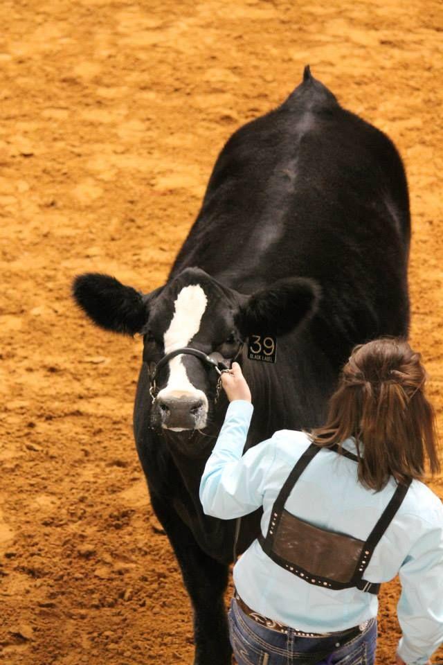10 best Farm Animals images on Pinterest | Farm animals, Animal ...