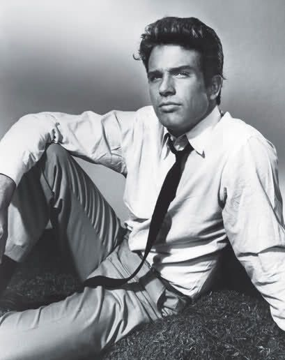 WARREN BEATTY (Heaven Can Wait, Reds, Splendor In The Grass, Bonnie And Clyde, The Only Game In Town and Shampoo)