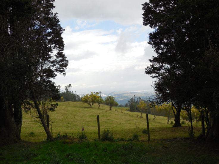 View of the Sabana de Bogota