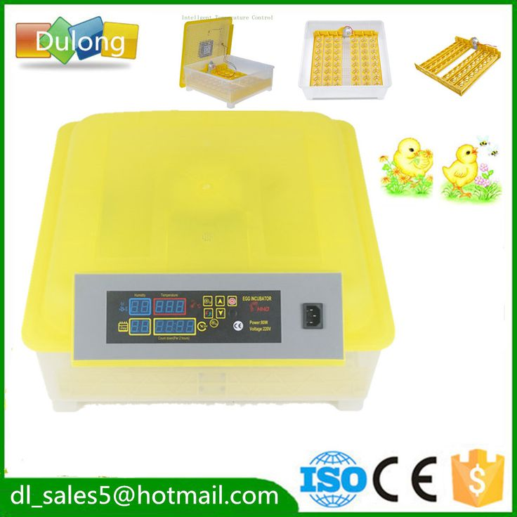 home fully automatic  egg incubator 48 egg mini poultry chicken brooder hatcher machine for sale