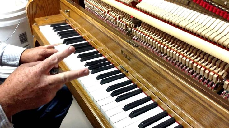 Piano Tuning - Tuning Theory Part 4 - Coincident Partials