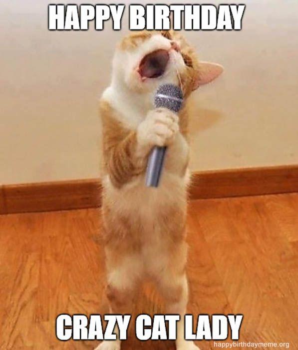31 Funniest Cat Birthday Meme Happy Birthday Funny Cats Happy Birthday Cat Cat Birthday Funny