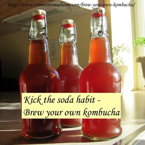 Kick the Soda Habit - Brew Your Own Kombucha @ Common Sense Homesteading