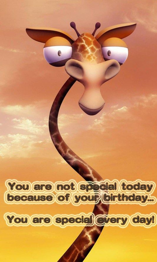 Funny birthday image with greeting words