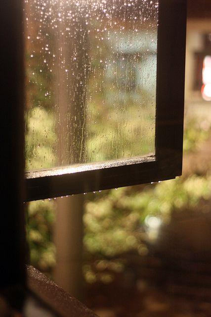 Abbiamo bisogno anche della pioggia affinché, con l'arrivo del sole, i colori possano mostrarsi in tutta la loro bellezza! buongiorno a tutti Voi dal TFSR