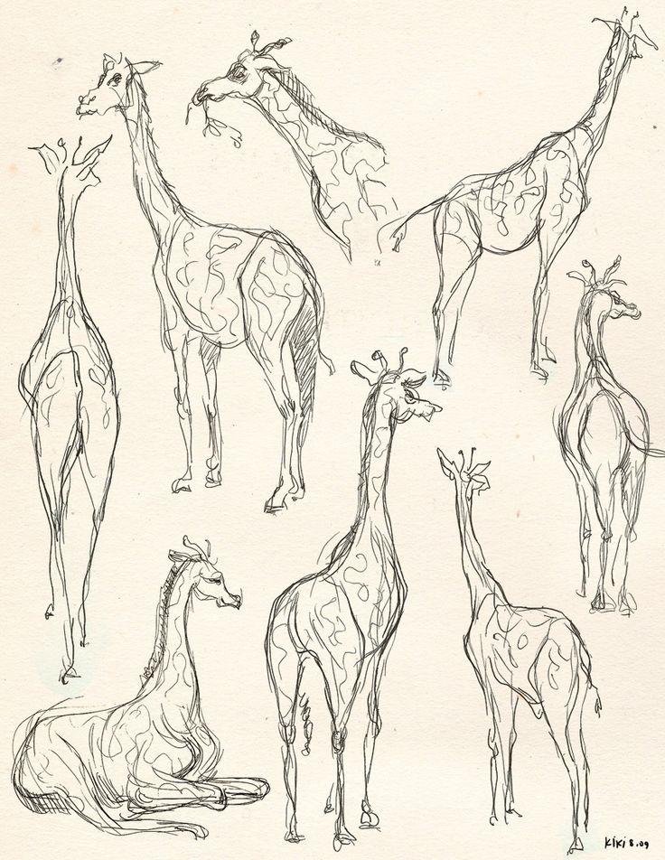 giraffe sketches by kiki