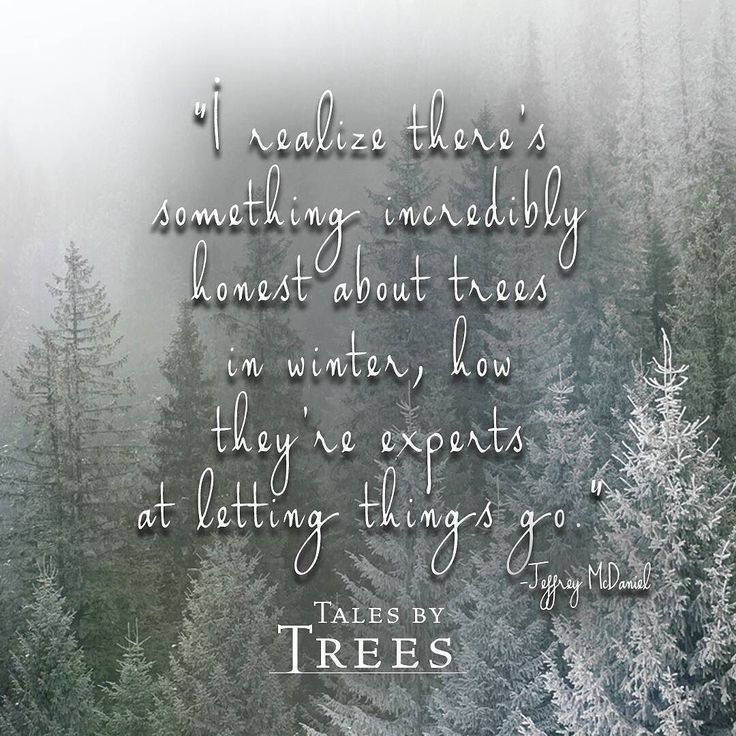 #quote #inspiringquote #lettinggo #talesbytrees