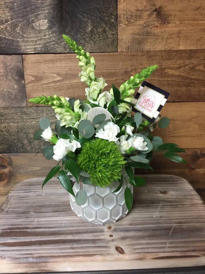Gorgeous Green Greenarrangements Shoplocal Arenticute Enjoytheday Tricillium Flowers Flower Delivery Order Flowers Online