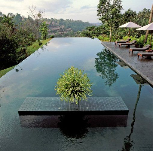 infinity pool: Domestic Ubud, Swimming Pools, Dark Pools, Awesome Swim Pools, Domestic Hotels, Dreams Pools, Awesome Pools, Pools Ideas, Pools Piscina