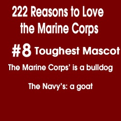 my reasons for joining the marine corps I have always wanted to join the marines, but i'm not sure if my parents will approve my dad is a foreign service officer, and he expects me to go to college that's a view that has a great degree of bias coloring it this makes you a fucking cock smoker here is my reasoning for this premise.