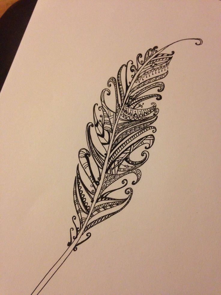 Feather Doodle Completed 21 12 13 Doodles Pinterest Feathers Zentangle And Doodles
