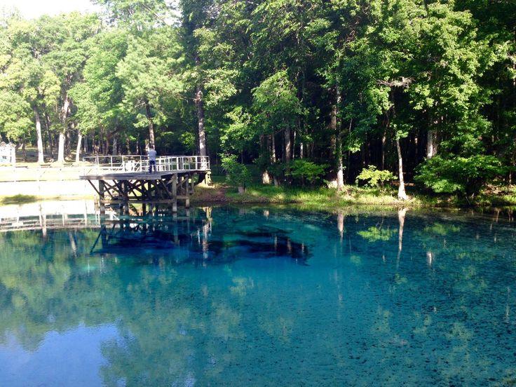Blue Springs, Florida [980x460]