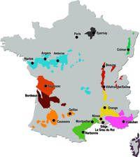 Institut Francais de la Vigne et du Vin - IFV, Vigne, vin, mildiou, maladies du bois, recherche sur la vigne,