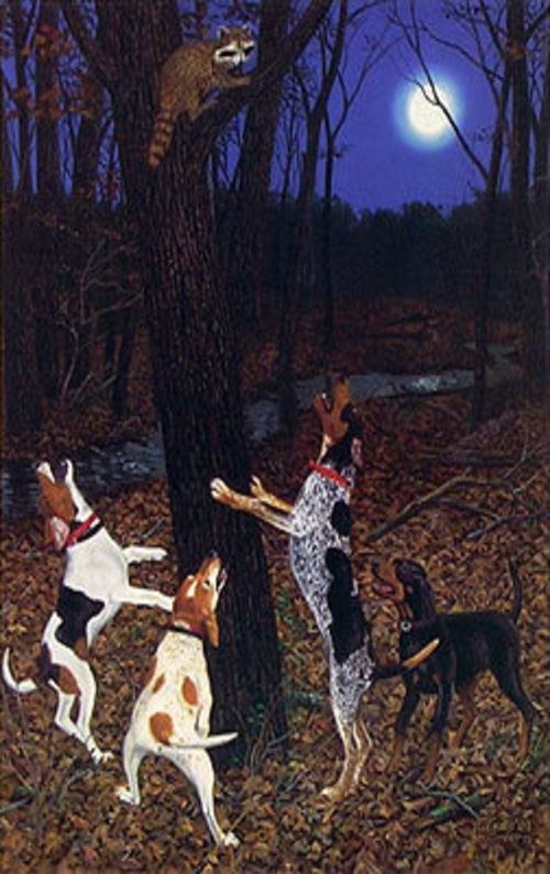 Coon Hunting Painting