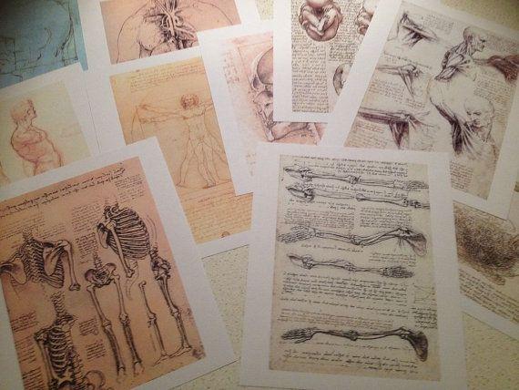 Set of x10 Da Vinci anatomy portfolio works