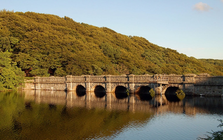 Burrator Dam dartmoor