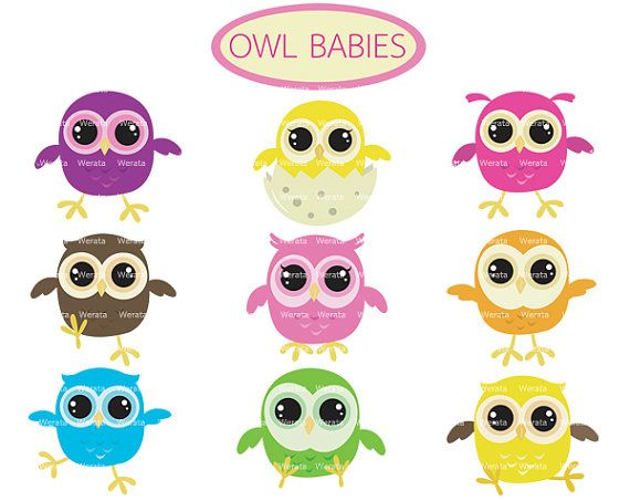 227 best images about Baby Owl Shower on Pinterest | Owl ...