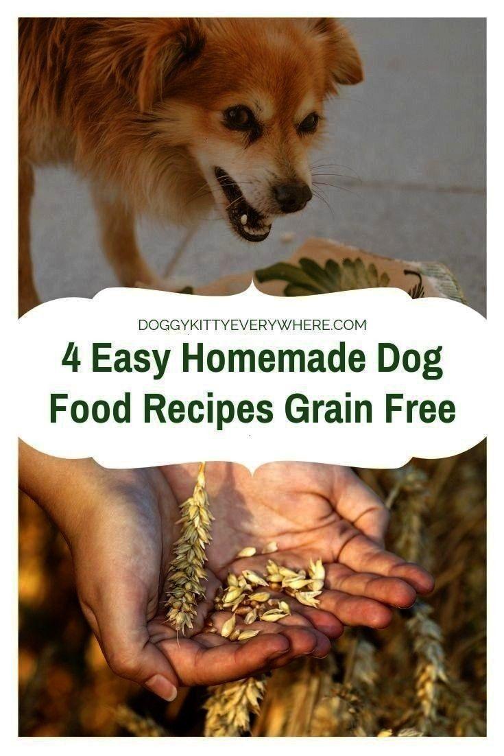 Homemadedogfood Dogtrainingtips Agerelated Illnesses Allergies
