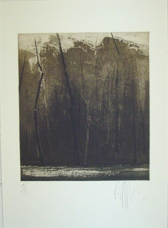 original+etching+of+a+landscape+'wintercold+I'hand+by+Fleurografie,+€48.00