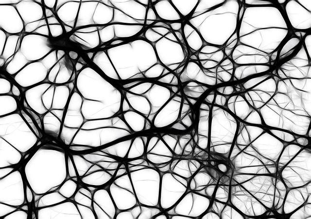 Neuronen, Hirnzellen, Hirnstruktur, Gehirn, Netzwerk