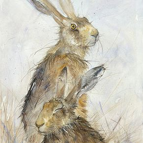 28/04/2015 2 hares in Black Field! Hares by Kate Wyatt