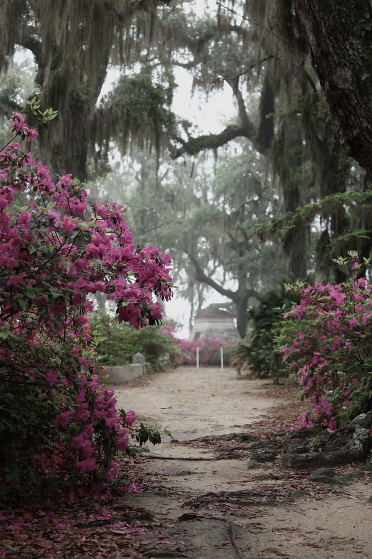 Bonaventure Cemetery, Savannah, GA photo by Dick Bjornseth