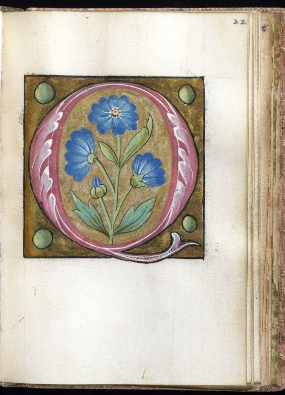 """""""Q"""" Leaf from Alphabet Book 