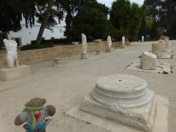 Mini Bear examines the ruins at Carthage, Tunisia in April, 2013.