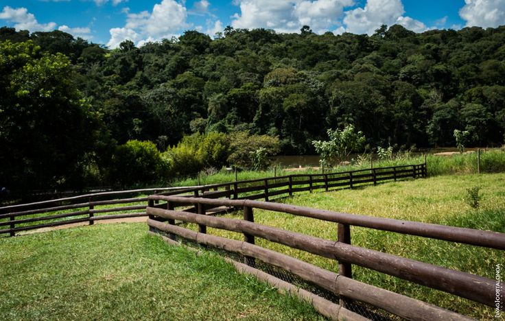 Zoo Itatiba