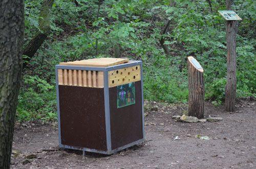 Mimó és Csipek | Hallgasd meg az erdő titkait!