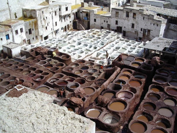 Tannery Morocco