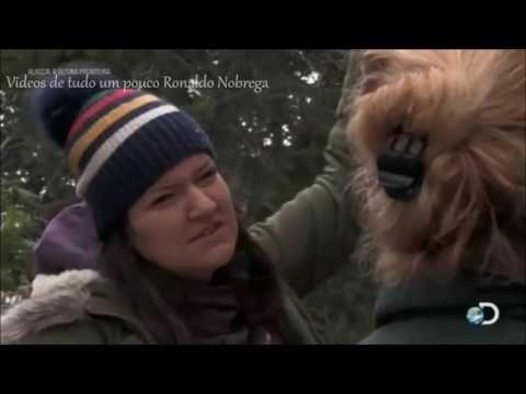 Alaska A Última Fronteira - 6ª Temp Ep 6:  Discovery Channel