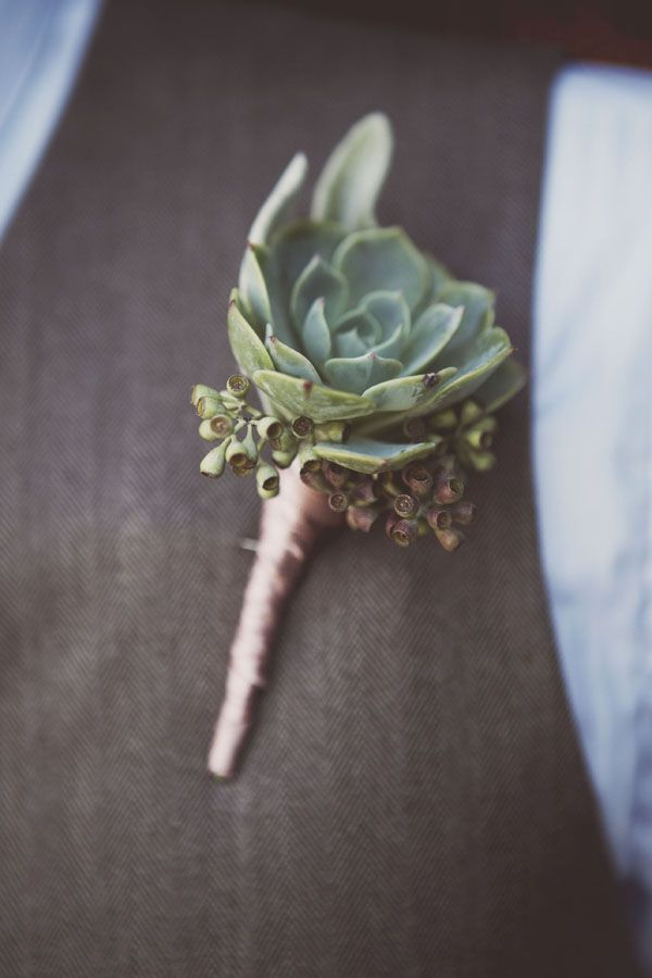 Nicely done succulent bout. www.russwholesale... RusswholesaleFlow... offers the best wholesale succulent prices available to the public online. wholesale succulents for bouquets, special events, wreaths, diy and more. 3 different sizes to meet your needs.