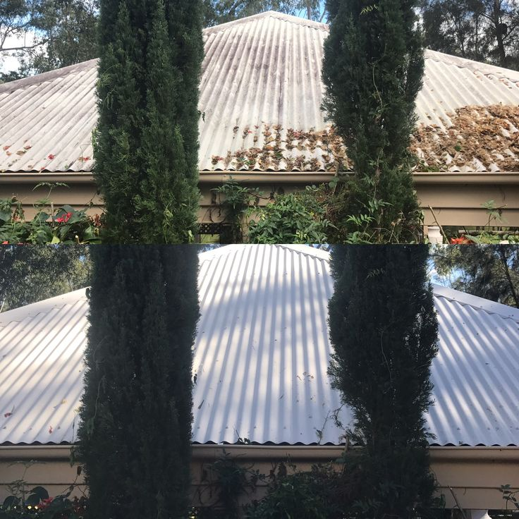 Roof cleaning by www.waterworxpressurecleaning.com.au servicing Brisbane to the Gold Coast and surrounding areas.