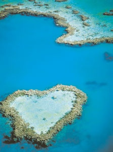 Luna di miele in Australia...la barriera corallina.... dose any one else see that that island is a heart?! i do