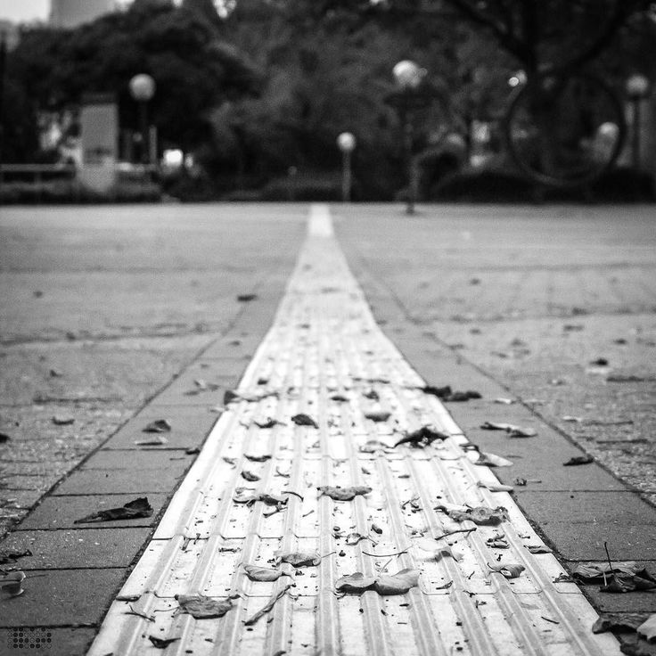 Vertrauen // Trust. . . . #herbst #fall #autumn #dortmund #igersdortmund #ruhrarea #ruhrdistrict #ruhrgebiet #unidortmund #universitydortmund #universitätdortmund #architecture #architektur #streetstyle #streetphotography #street #details #closeup #snapshot #Nikon #df #nikondf #lightroom #bnw #schwarzweiß #blackandwhite #schwarzweiss #bw_lover #igersbnw #smalltownsnapshots