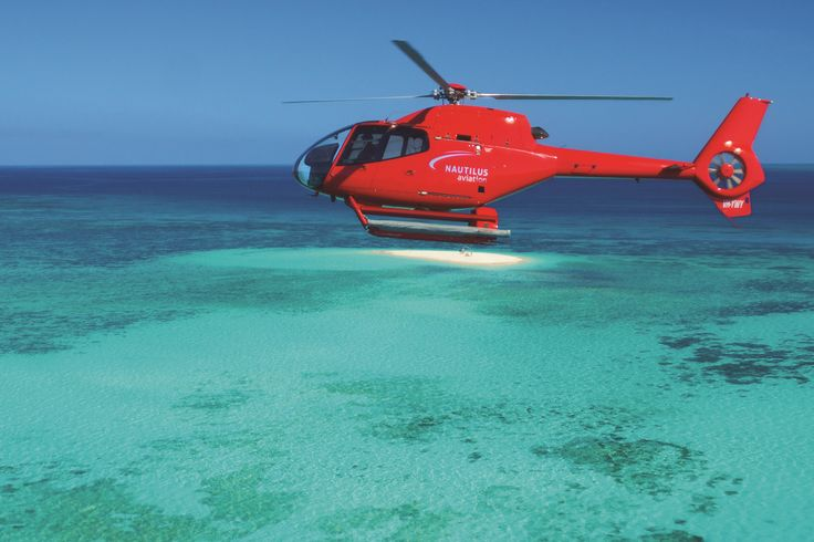 flying above the sand cay