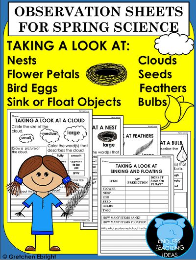 This is a set of Observation Sheets to go along with your Spring Science lessons. Your students will explore feathers, nests, eggs, bulbs, seeds, clouds, flower petals and do a Sink and Float activity. They will then record their observations on the printables included in this packet. Recording includes drawing, circling the correct word, fill-in-the-blank and writing sentences. Kindergarten, 1st, 2nd grades #spring, #printables, #science, #clouds, #bulbs, #seeds, #feathers, #nests, #eggs,