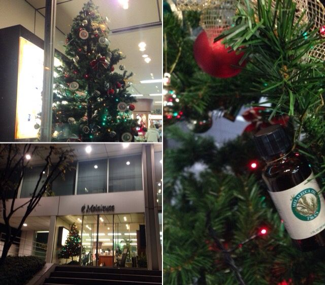 #Melaleuca #TOKYO #JAPAN  Yesterday I went to Melaleuca of Japan Tokyo Store. Shining Christmas tree.    【 メラルーカティーツリーのXmasツリー 】 今年も東京ストア入り口に、クリスマスツリーが飾られました。  オーナメントには、ティーツリーオイルのボトルでデコレーションされ、メラルーカティーツリーのような癒しと温かみのあるツリーです。  #クリスマス #ティーツリー #クリスマスツリー #メラルーカ