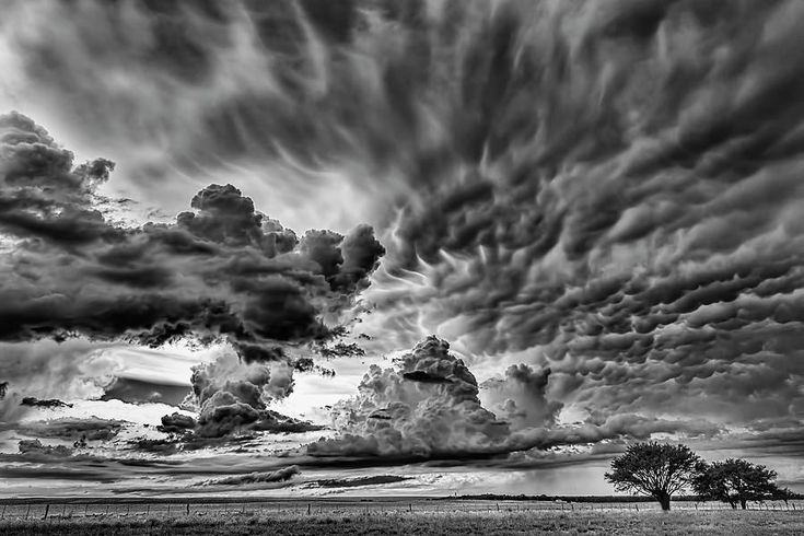 Heaven In Black And White Photograph by Pablo Rodriguez merkel